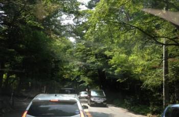 森林浴-thumb-400x533-39444